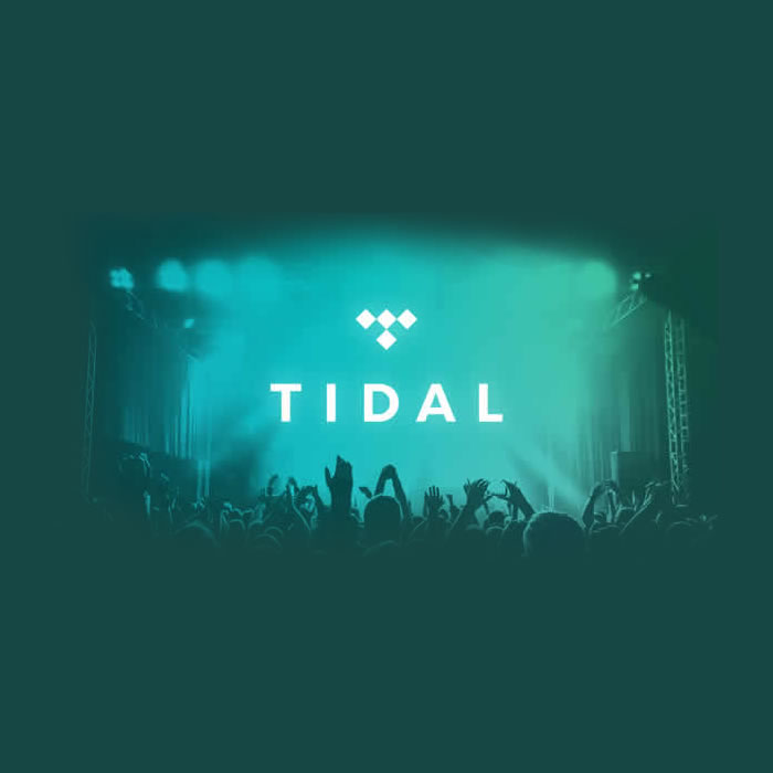 Migration from Kugou Music to Tidal